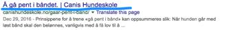 Hvordan_få_hunden_til_å_gå_pent_i_bånd__-_Google_Search